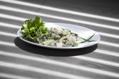 Salade gebakken aubergine en verse tomaten royalty-vrije stock foto