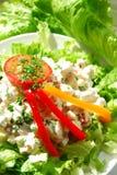Salade grecque Photo stock