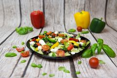 Salade grecque savoureuse avec le fond photos stock