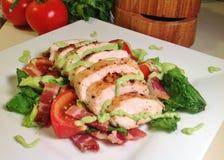 Salade grillée de blanc de poulet photographie stock