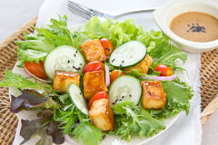 Salade grillée de tofu avec la rectification de sésame image stock