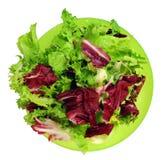 Salade in groene kom Stock Foto