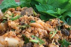 Salade hachée épicée de porc image libre de droits