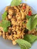 Salade hachée chaude et épicée de porc Photo libre de droits