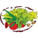 Salade Royalty Free Stock Image