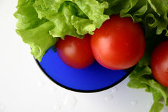 Salade III de RVB photo stock