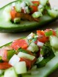 Salade indienne de concombre Image libre de droits