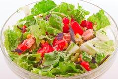 Salade italienne Photographie stock libre de droits
