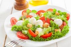 Salade italienne délicieuse de mozzarella avec des croûtons Images stock
