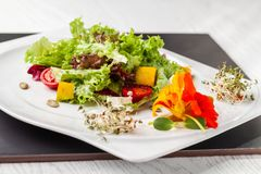 Salade italienne européenne de laitue, des tomates-cerises, du potiron, des fleurs comestibles de potiron, et des graines de citr image stock