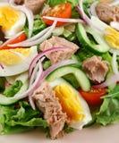 Salade jetée en l'air de thon et d'oeufs Photo libre de droits