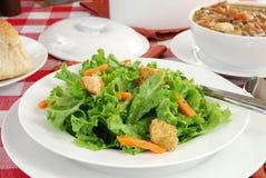 Salade jetée en l'air fraîche image libre de droits