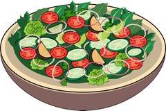 Salade jetée en l'air Photographie stock libre de droits