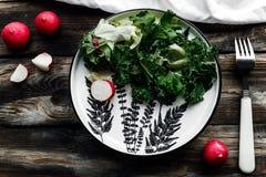 Salade légère de ressort avec des légumes Images libres de droits