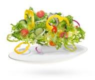 Salade légère des légumes frais Photographie stock libre de droits