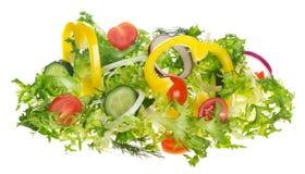 Salade légère des légumes frais Images libres de droits