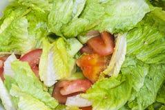 Salade - légumes mélangés Image libre de droits