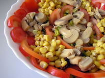 Salade méditerranéenne Photos libres de droits