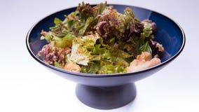 Salade mélangée de viande avec de la laitue, le porc et le poulpe dans le Chinois bleu images libres de droits