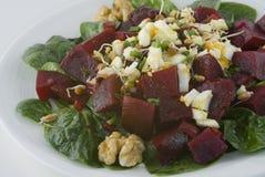 Salade met bieten, gekookt ei, en taugé Stock Fotografie