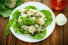 Salade met bloemkool, tomaten en kruiden Stock Fotografie