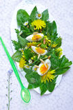 Salade met bloesems stock fotografie