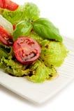 Salade met de tomaat en het basilicum van de Plak stock afbeeldingen