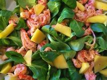 Salade met garnalen en mango royalty-vrije stock foto