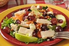 Salade met geroosterde kip royalty-vrije stock fotografie
