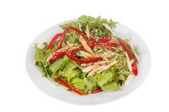 Salade met groene paprika en vlees, geïsoleerd wit stock afbeeldingen
