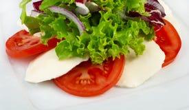 Salade met groenten en kaas Royalty-vrije Stock Afbeelding
