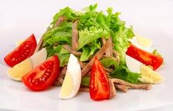 Salade met groenten en rundvlees Royalty-vrije Stock Foto's