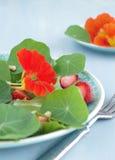 Salade met Indische tuinkers en aardbeien Royalty-vrije Stock Afbeelding