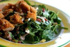 Salade met Kip Stock Fotografie