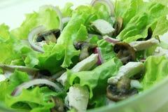 Salade met paddestoelen en kip. Stock Afbeeldingen