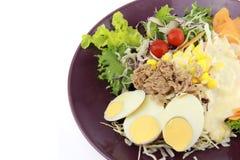 Salade met plakei en tonijn Stock Foto