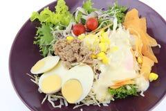 Salade met plakei en tonijn Royalty-vrije Stock Foto's