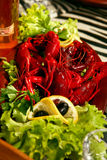 Salade met rivierkreeften Stock Foto