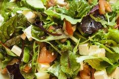 Salade met ruccola, tomaat, komkommer en feta Royalty-vrije Stock Afbeeldingen