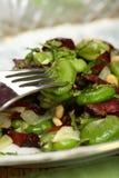Salade met salami Royalty-vrije Stock Foto's