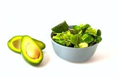 Salade met snijbietenbladeren en avocado op geïsoleerde witte achtergrond royalty-vrije stock foto's