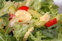 Salade met tomaten Stock Foto's