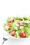 Salade met tomaten Stock Foto