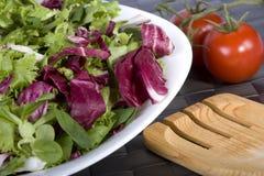 Salade met tomaten Stock Afbeelding