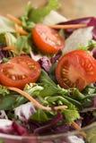 Salade met tomaten Royalty-vrije Stock Afbeeldingen