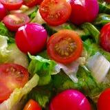 Salade met tomaten Stock Afbeeldingen