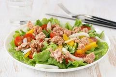 Salade met tonijn Stock Foto