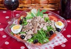 Salade met tonijn en ansjovissen Stock Afbeeldingen