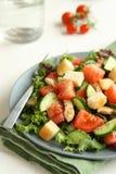 Salade met vlees, komkommers, tomaten en croutons Stock Foto