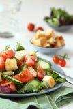 Salade met vlees, komkommers, tomaten en croutons Royalty-vrije Stock Foto's
